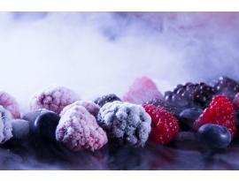 ¿Es posible conservar y transportar los alimentos congelados durante el verano?