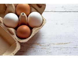¿Cómo conservar los huevos?