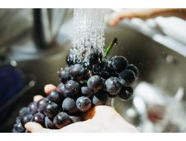 ¿Cómo desinfectar las frutas y verduras antes de su venta?