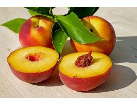 ¿Qué son las hojas de etileno y por qué se utilizan para conservar fruta?