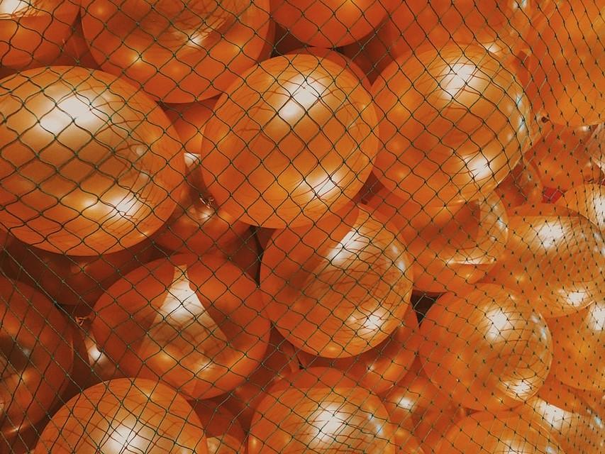 ¿Qué diferencia hay entre la malla extruida y la malla tejida hortofrutícolas?