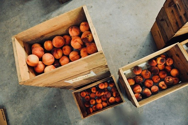 ¿Por qué es importante utilizar fondos y forros para transportar la fruta?