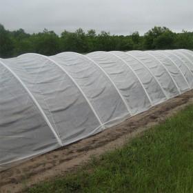 invernadero de plastico